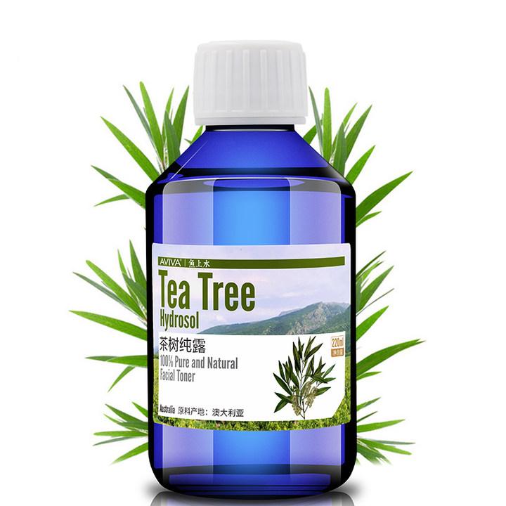 澳洲茶树纯露是一种天然的抗菌消炎剂